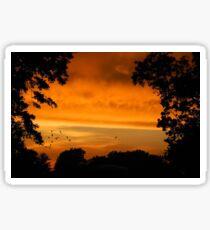 Sunset Storms Sticker