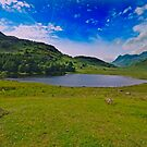 Blue Day At Blea Tarn by John Hare