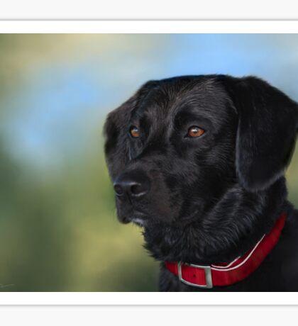 Black Lab - Dog Portrait Sticker