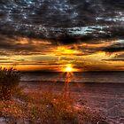 Sunrise over New York Bay by Yelena Rozov