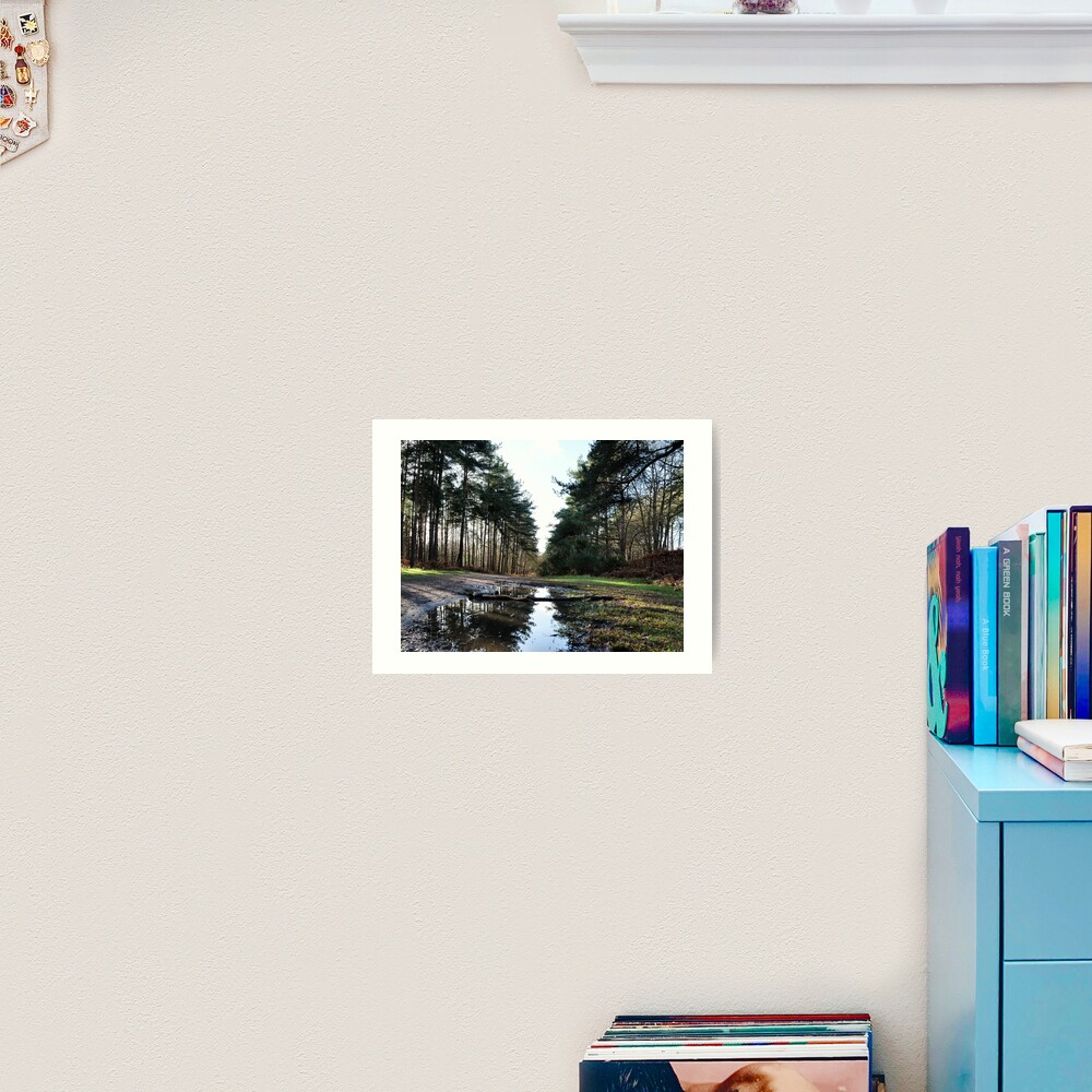 Reflection in Swinley Forest Art Print