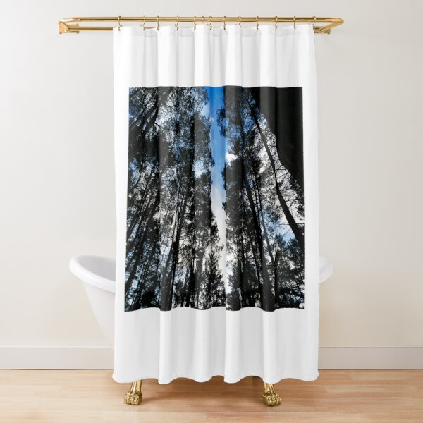 Blue skies and trees at Swinley Forest Shower Curtain
