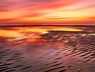 Beach Ripples Sunset by David Alexander Elder