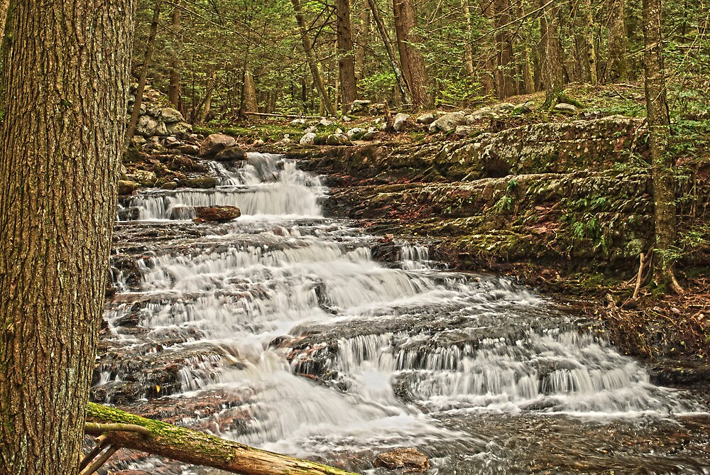 Waterfall Ridge by Sally Kady