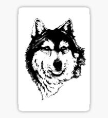 Timber wolf (Canis lupus lycaon) Sub-species of (Canis lupus) Sticker