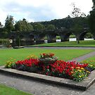 Inistioge Bridge,River Nore,Co. Kilkenny / Co. Wexford on other side. by Pat Duggan