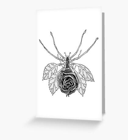 SpideRose Greeting Card