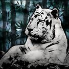 Marble Tiger by Jessica Fittock