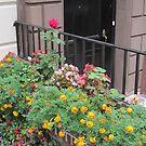 An Urban Garden by Patricia127