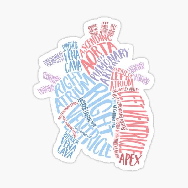 Pastel Heart Gross Anatomy Typography Sticker