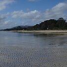 Toogarook Beachscape by Ken Tregoning