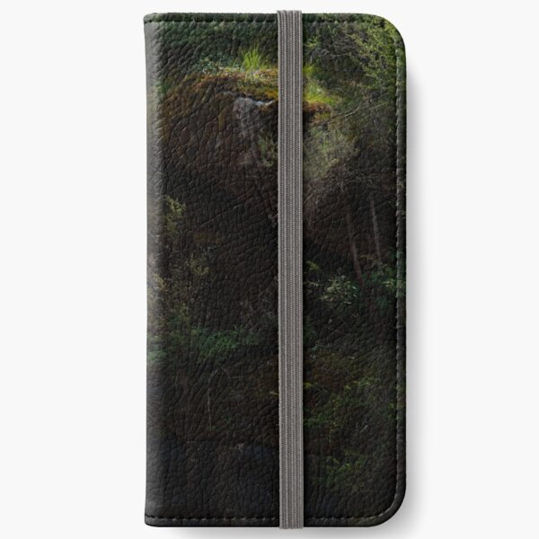 Falling Into The Ladies' Bath iPhone Wallet