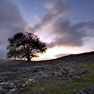 A Wild And Windswept Moor by SteveMG