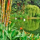 The Swan Pond of Istana by Adri  Padmos