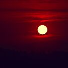 Red red Sunset by Kym Howard