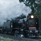 0775 Steam Train by DavidsArt