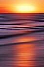Reflecting Beams of Sunshine by David Alexander Elder