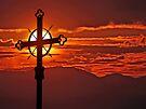 Risen Again  by David Alexander Elder
