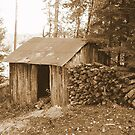 The Wood Shed by PatChristensen
