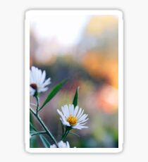 wonderful world of wildflowers Sticker