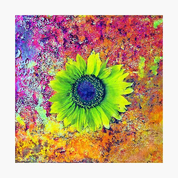 Abstract sunflower Photographic Print