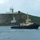 Tugs returning to port by DashTravels