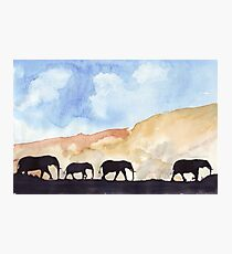 Silhouettes of Africa Photographic Print