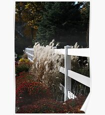 Autumn Is In The Air Poster