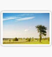 Rural grassland trees view Sticker