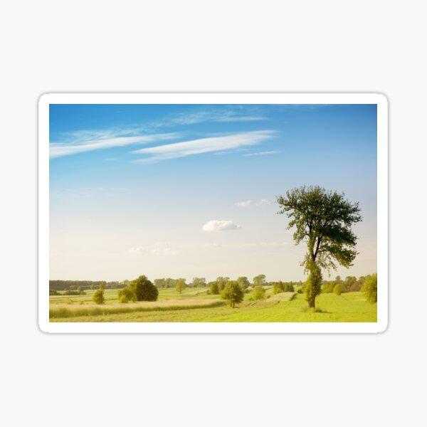 Rural grassland trees view Sticker