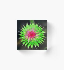 Purple Thistle Flower Acrylic Block