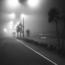 Winters night by Paul Mercer