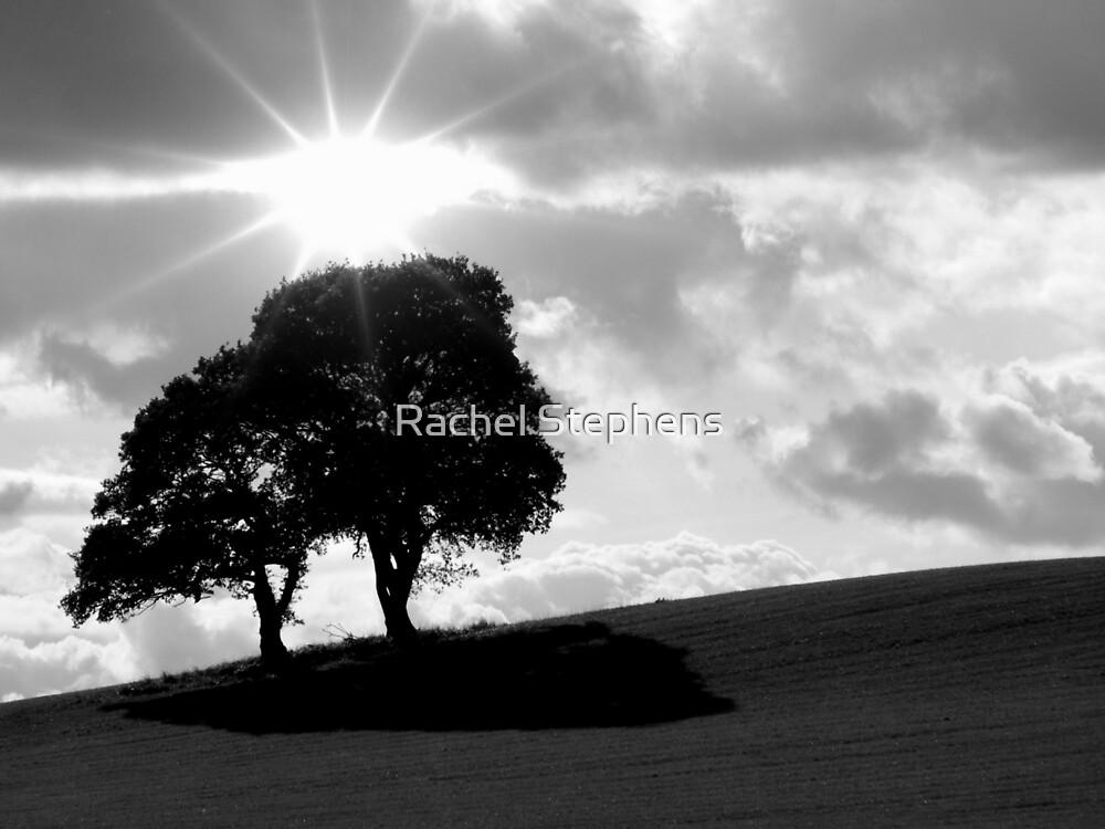 Autumn Rays by Rachel Stephens