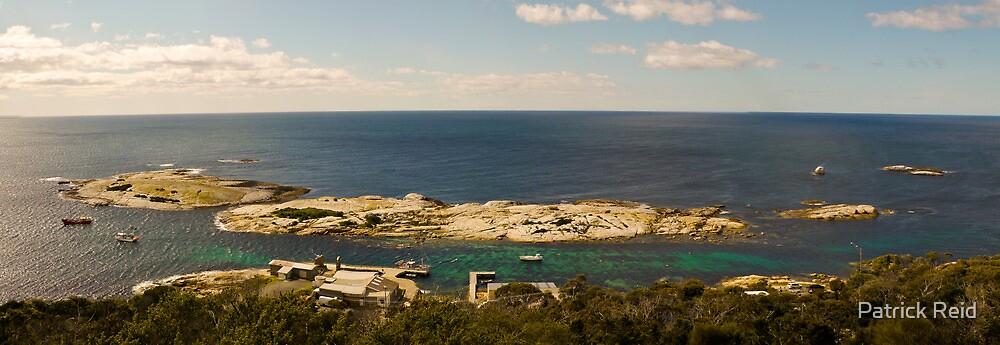 Goveners Island  by Patrick Reid