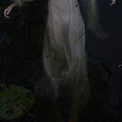Dark Water III by Alexandra Ekdahl