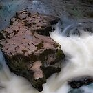 River Llugwy, Betws y Coed. by PhillipJones