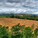 """The Hay Field, Clun"" by Bradley Shawn  Rabon"