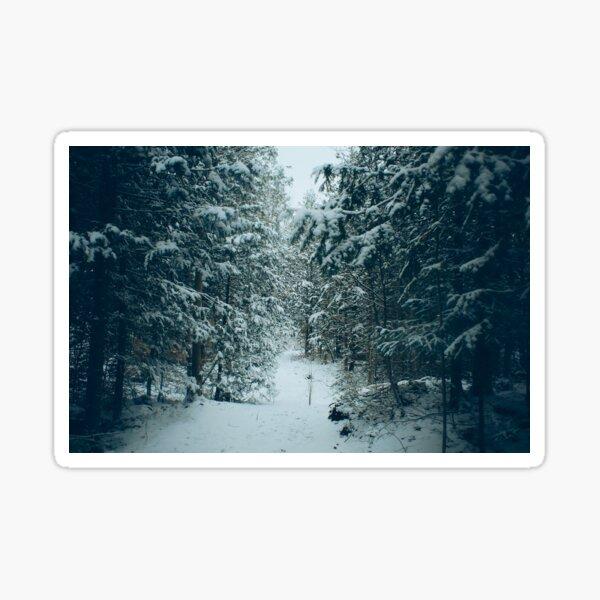 Winter Forest landscape Sticker