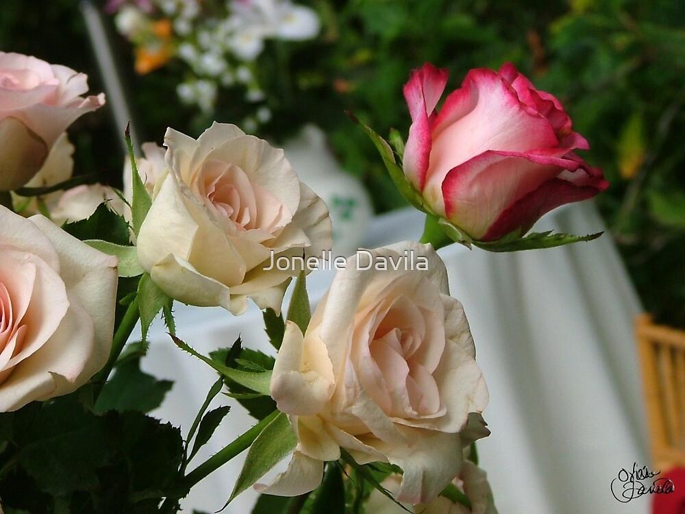 Babbette's Roses by Jonelle Davila