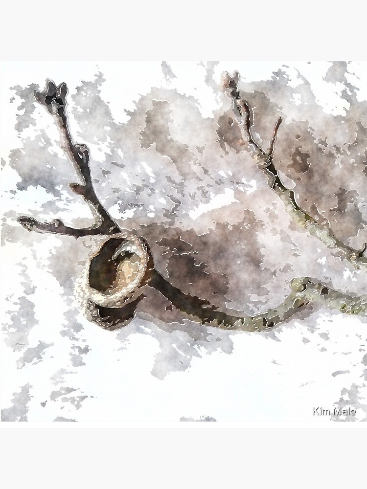 watercolor style Oak twig and acorn cap by lavenderdream