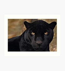 The Black Panther Art Print