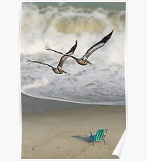 Pelican Pair with Surf and Beach Chair Poster
