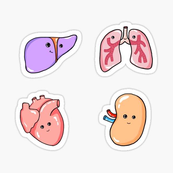 Happy Organs Set Sticker