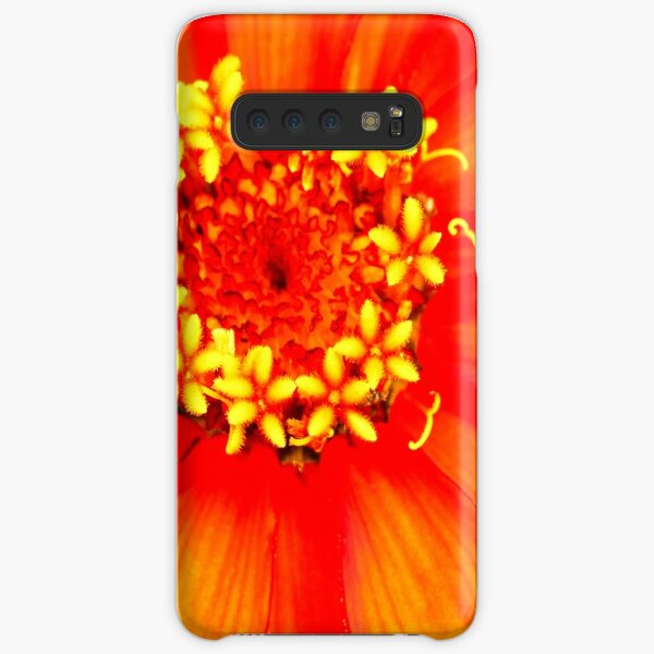 Zinnia Flower Lincoln Gardens,  Samsung Galaxy Snap Case