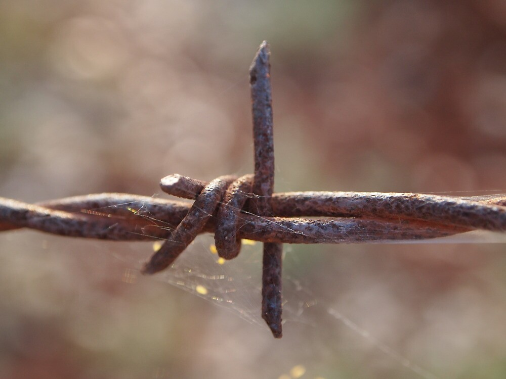 Rust Barb Wire by wye72