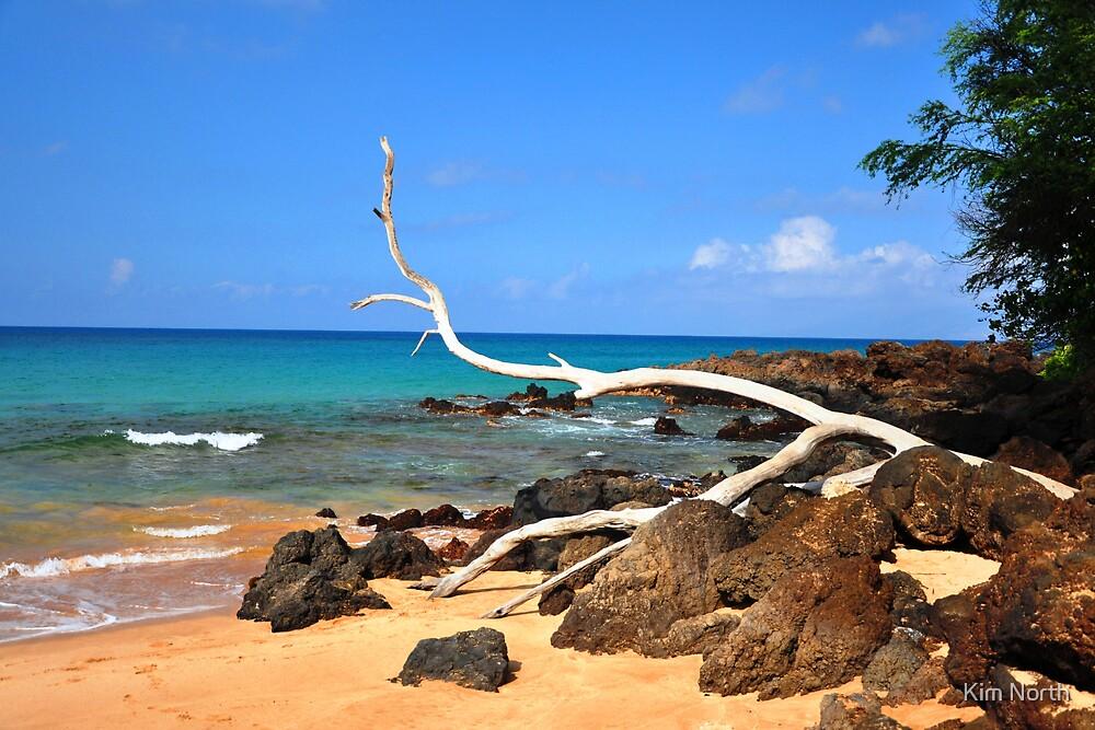 Secret Getaway - Maui, Hawaii by Kim North