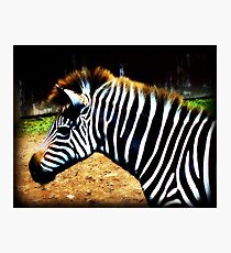 Strong in Stripes Photographic Print