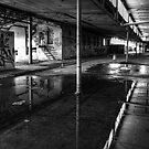 Bipolar Reflections by Reg  Lyons