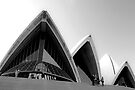 Sails of the Sydney Opera House by Renee Hubbard Fine Art Photography