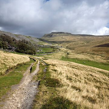 Ingleborough From Crina Bottom by SteveMG
